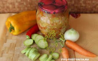 Кабачки на зиму – простые рецепты заготовки маринованных кабачков, икры и лечо