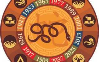 Год Змеи – особенности характера металлической, водяной, деревянной, огненной и земляной Змеи