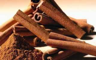 Корица – полезные свойства и противопоказания, польза для похудения, дозировка и рецепты с пряностью