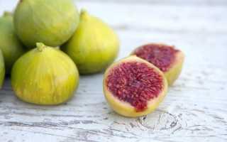 Инжир – полезные свойства для женщин и противопоказания, польза и вред, рецепты