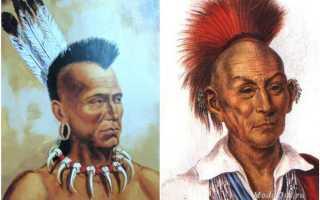 Женский ирокез – история, на короткие и длинные волосы, мини, с челкой, косичкой, обратный, разноцветный, кудрявый, фальшивый, широкий, мужской