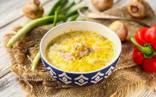 Грибной суп из шампиньонов – рецепты с сыром, сливками, курицей и картофелем