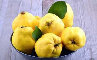 Айва – польза и вред для здоровья свойства вареного фрукта и семечек плодов