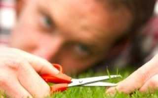 Кто такой перфекционист – значение слова перфекционизм, это болезнь или нет, хорошо или плохо?