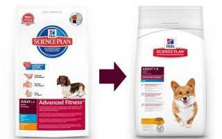 Корм для собак Хиллс – продукция, предназначенная для маленьких и больших пород