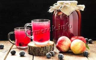 Компот из яблок и слив на зиму – рецепты с калиной, абрикосами, грушами