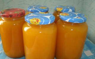 Апельсиновый сок – рецепты в домашних условиях на зиму, с тыквой, без соковыжималки