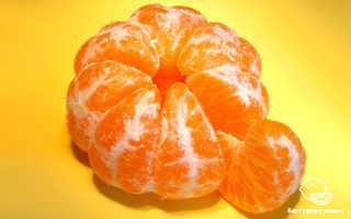 Мандарины – польза и вред для здоровья свойства масла, косточек и кожуры цитрусового