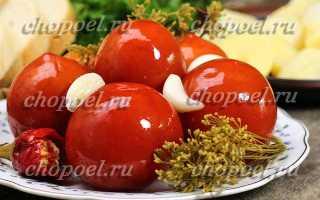 Бочковые помидоры – рецепты квашенной закуски в банке, холодным способом и с горчицей