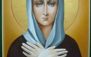 Икона Ксении Петербургской – история, значение, молитва, праздник, к чему снится икона блаженной Ксении Петербургской?
