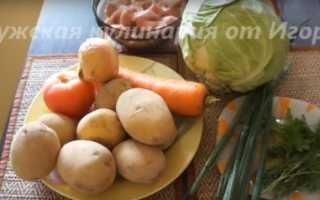 Щи из свежей капусты – рецепты приготовления блюда с курицей, грибами, говядиной и свининой