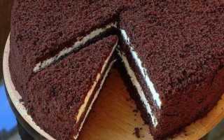 Шоколадный бисквит на кипятке – лучшие рецепты без яиц, с маслом, кефиром или горячим молоком