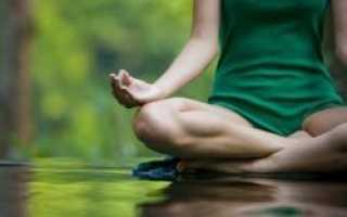 """Рецензия на книгу """"Осознанная медитация – практическое пособие по снятию боли и снижению стресса, Видьямала Берч и Дэнни Пенман"""""""