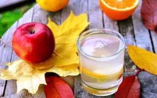 Сливовый компот – рецепты с абрикосами, яблоками, мятой и апельсином