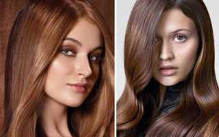 Цвет волос молочный шоколад, шоколадные оттенки волос – холодный шоколад, молочный шоколад с карамелью. Краска для волос молочный шоколад