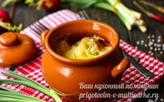 Пельмени в горшочках – рецепты блюда с грибами, сыром, печенью и сметаной