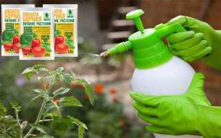 Опрыскивание томатов борной кислотой для завязи – как обработать, когда опрыскивать?