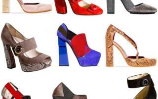 Стильные женские туфли на каблуке – высоком, среднем, маленьком, небошльшом, толстом, широком, квадратном, открытые, закрытые, вечерние, оригинальные, лакированные, прозрачные