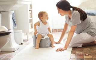 Когда нужно приучать ребенка к горшку? Как научить ребенка проситься на горшок?