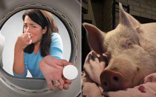 Как устранить запах в стиральной машине автомат – причины и средства