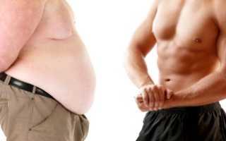 Пептиды – что это такое, применение для похудения, роста мышц и сжигания жира