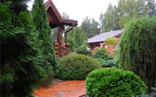 Дизайн дома – как можно обустроить строение снаружи и изнутри, примеры ландшафтного дизайна