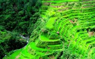 Рисовые террасы в Филиппинских Кордильерах, Rice Terraces of the Philippine Cordilleras – Багио