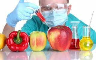 Генетически модифицированные продукты, вред и польза ГМО, что такое ГМО в продуктах питания