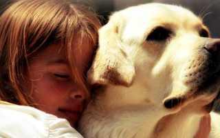 25 фотографий детей и собак, после которых вы захотите себе домашнего питомца