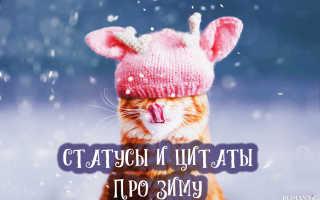 25+ смешных фото о том, что зима — веселое время года