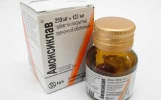 Таблетки Амоксиклав – состав, дозировка. Как принимать Амоксиклав? Антибиотик Амоксиклав и алкоголь – совместимость