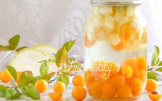 Компот из алычи на зиму – простые рецепты с кабачками, абрикосами, яблоками и мятой