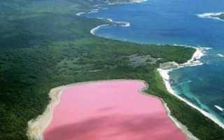 Розовое озеро, Pink Lake или Las Coloradas Pink Lake – Вальядолид